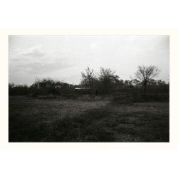 写真展 / 視線をむすぶ〈カラタチ〉